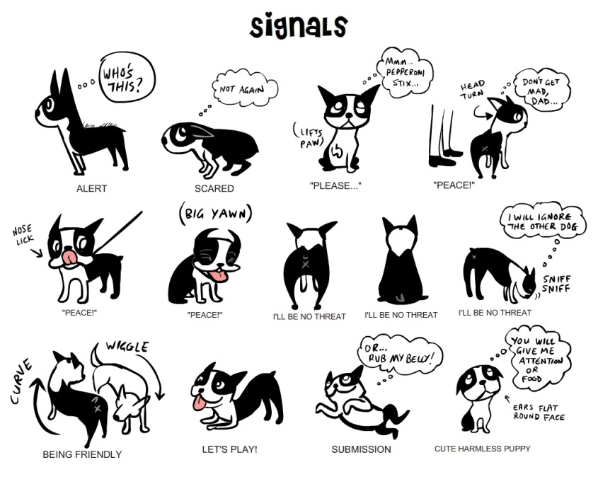 Dog Body Language Signals Chart