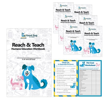 Reach & Teach Activity Guides for Kids