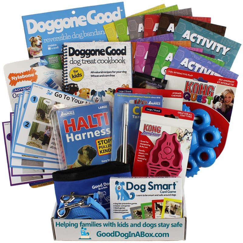 Good Dog In-Home Dog Training Program for Families