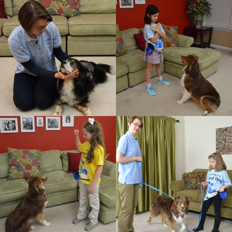Jenn Merritt CPDT-KA, Royal, Bernie, Kid Dog Trainers