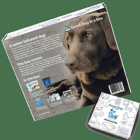 One Month Reward Based Dog Training Program