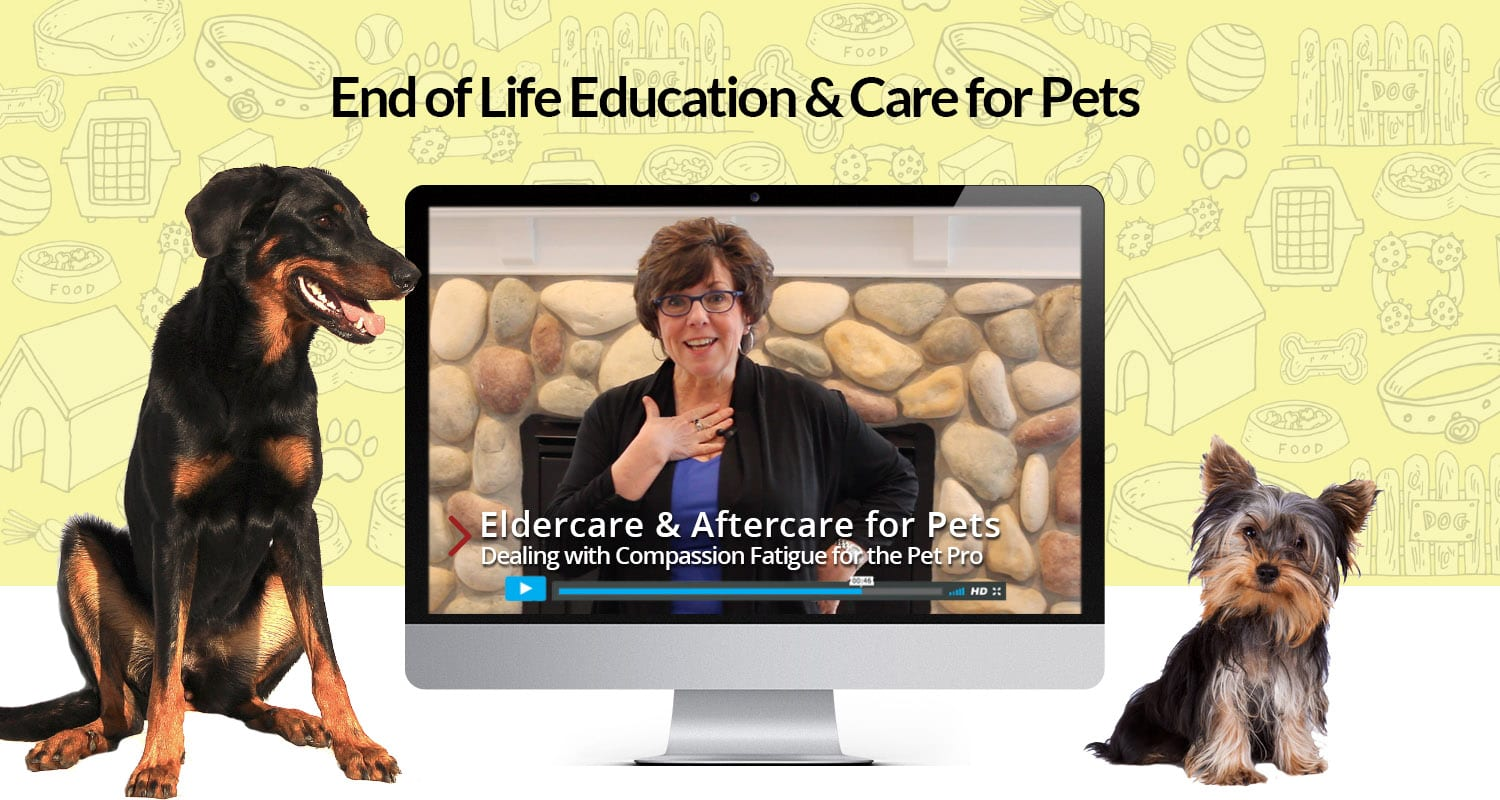 End of Life Education & Care for Pets
