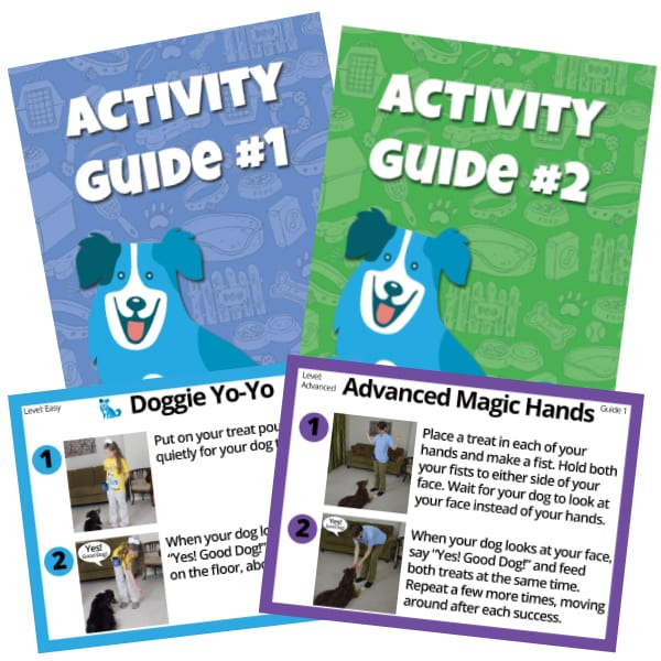Reward Based Dog Training Materials