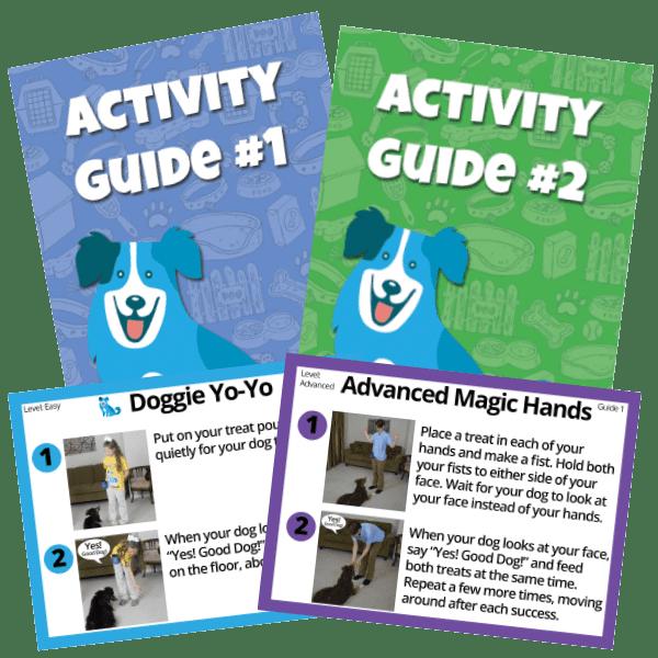 Reward Based Dog Training Materials