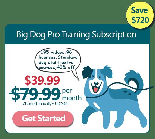 Big Dog Training Annual Subscription 50% off