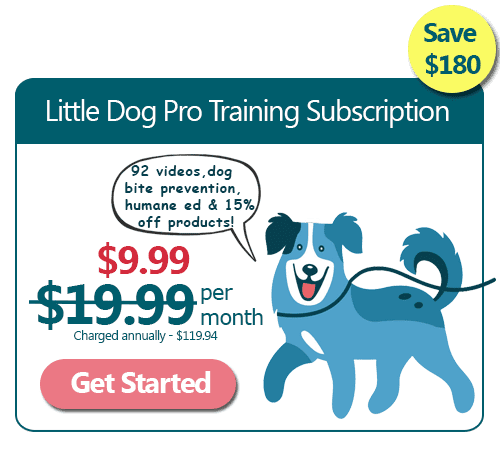 Little Dog Training Pro Subscription Annual