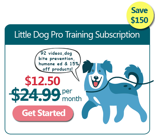 Little Dog Training Subscription 50% Off