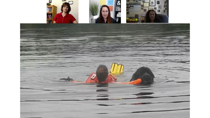 Newfoundland Saving Victim in Water