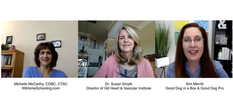 Dr. Susan Smyth Podcast