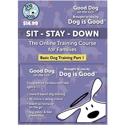 Dog Is Good Online Dog Training Sit Stay Down